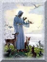 Jesus loves the animals