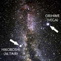 37 06 Altairi and Vega