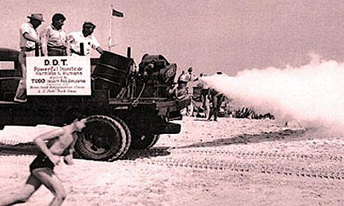 DDT trucks