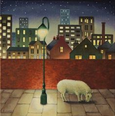urban sheep