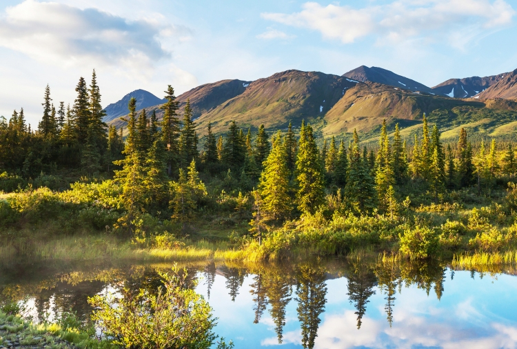 bigstock-Serenity-lake-in-tundra-on-Ala-48108113-2
